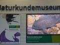 Naturkundemuseum Joanneum