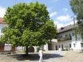 Göttweigerhof