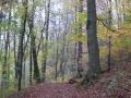 Goethe-Weg